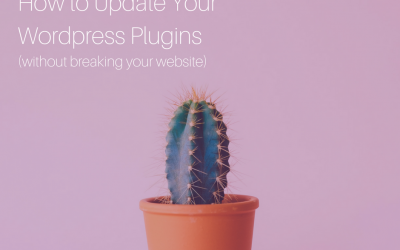 When and How to Update WordPress Plugins